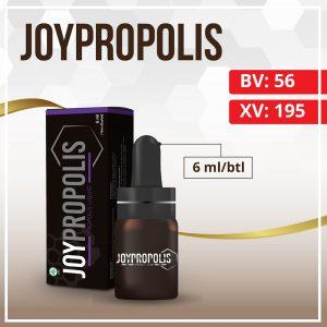 Catalog Joybiz - Joypropolis